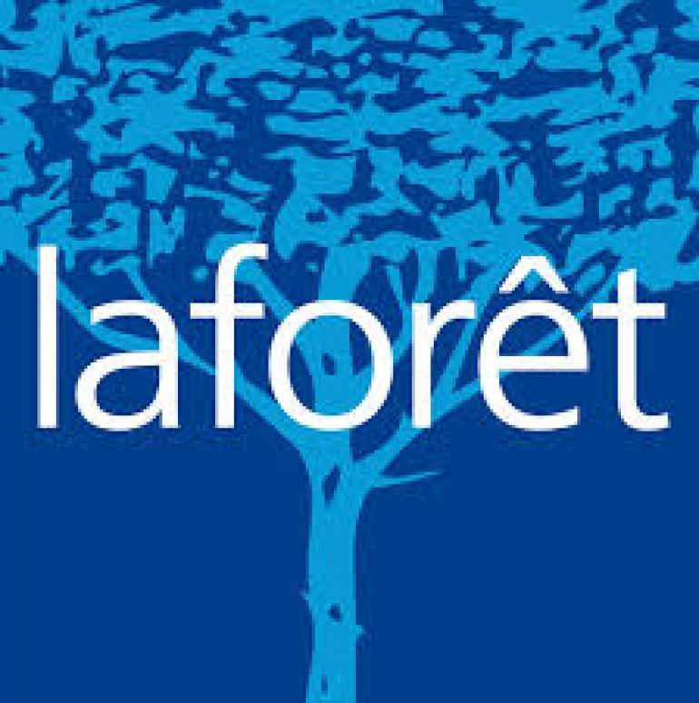 Logo Laforêt - Cabinet Mermet