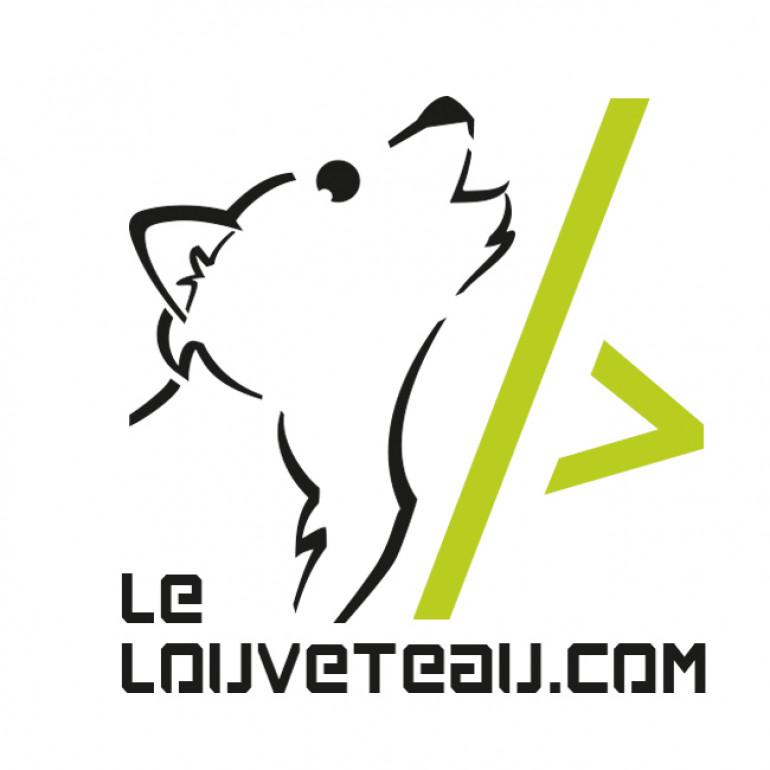 Logo lelouveteau.com