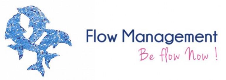 Logo Flow Management
